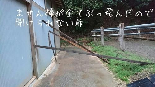b0187620_18571217.jpg