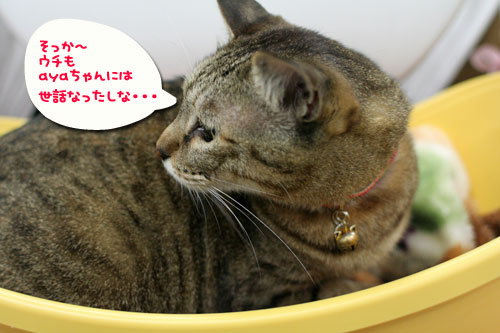 頼り頼られクロスマッチ★緊急のお願い★_d0355333_10554619.jpg