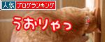 ちゃとらんと引き戸★猫動画_d0355333_11043443.jpg