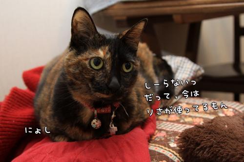 赤いちゃんちゃんこ_d0355333_14553614.jpg
