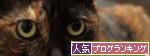 赤いちゃんちゃんこ_d0355333_14553749.jpg