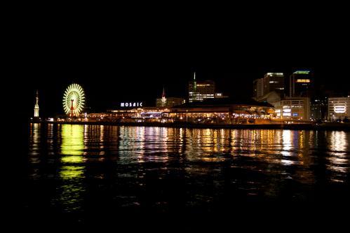 夜景とねこ_d0355333_14561216.jpg