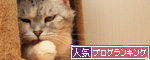 ほ~~っ・・・!_d0355333_14565244.jpg