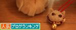 猫毛フェルトやってみました_d0355333_14575693.jpg