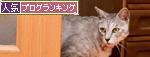 アニマルコミュニケーション体験_d0355333_14594958.jpg