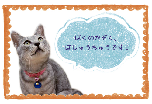 食いしん坊さん_d0355333_15014025.jpg