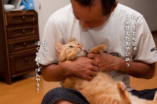 ぎゅっ!_d0355333_15014993.jpg