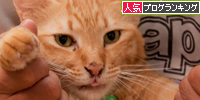 ぎゅっ!_d0355333_15015057.jpg