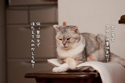 ぎゅっ!_d0355333_15015097.jpg