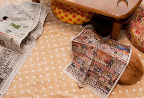 新聞遊びはたまんない!_d0355333_15033889.jpg