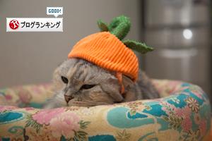 かぼちゃの姫_d0355333_16420002.jpg