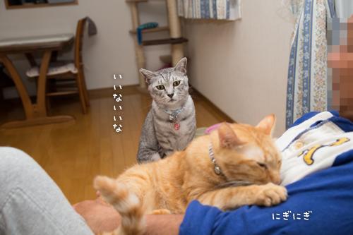 もじもじ再び_d0355333_16420945.jpg