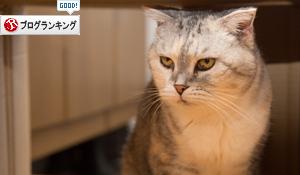 猫のツボ_d0355333_17004159.jpg