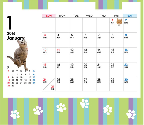 にゃんず日記カレンダー予約開始_d0355333_17013039.jpg