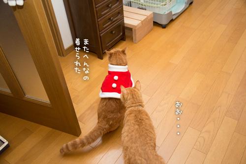ソロくんサンタ裏話_d0355333_17021614.jpg