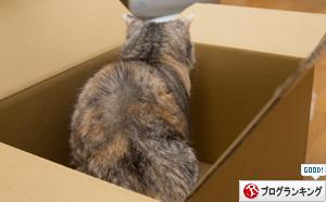 箱が気になるのはアナタだけ_d0355333_17251337.jpg
