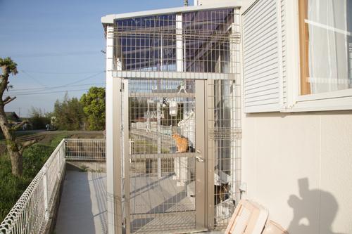 我が家の猫テラスの全貌_d0355333_17272746.jpg