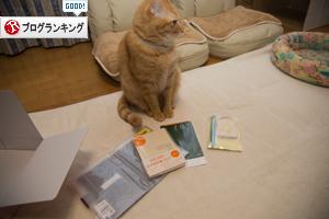 ほぼ日手帳がやってきた_d0355333_17302471.jpg