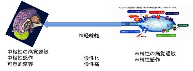 b0052170_19534392.jpg