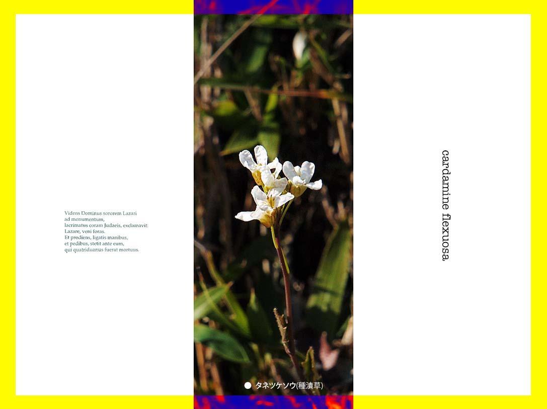 f0198771_23515213.jpg