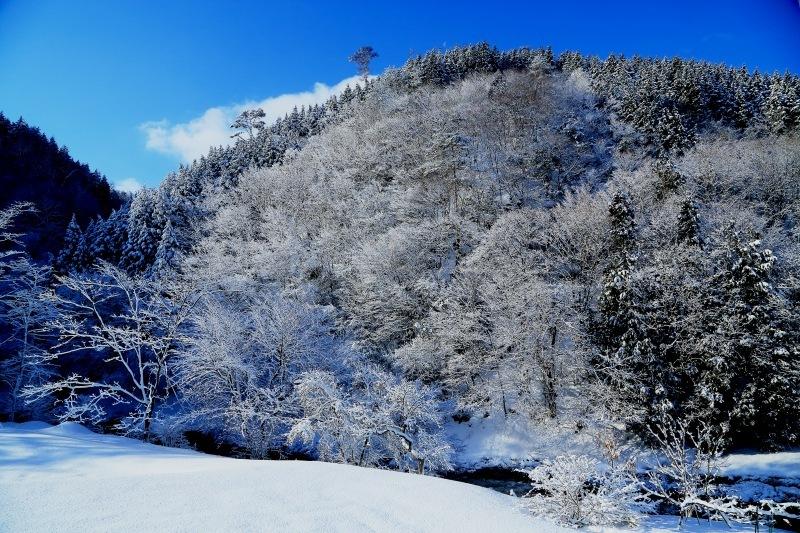 山に暮らせば_e0091879_20265710.jpg