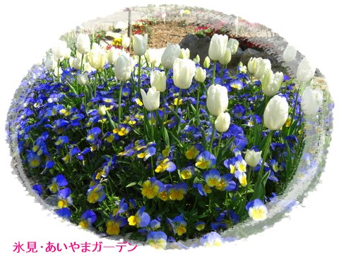 b0171501_17251910.jpg
