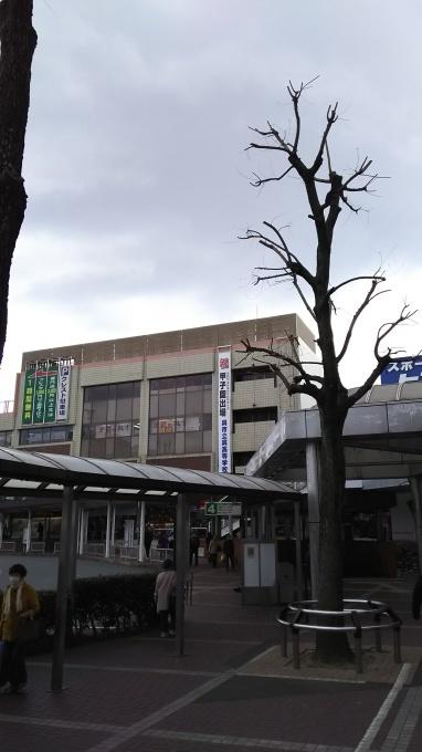 祝!呉高校 選抜高校野球出場_e0094315_16544561.jpg