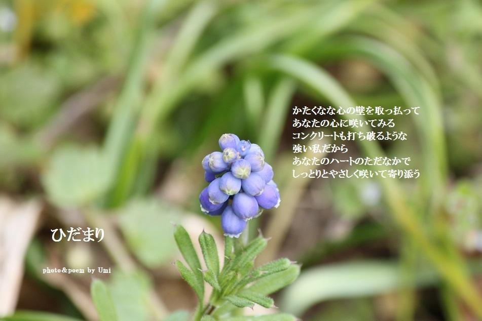 f0351844_17360422.jpg