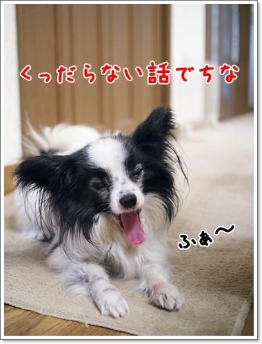 d0013149_00485193.jpg