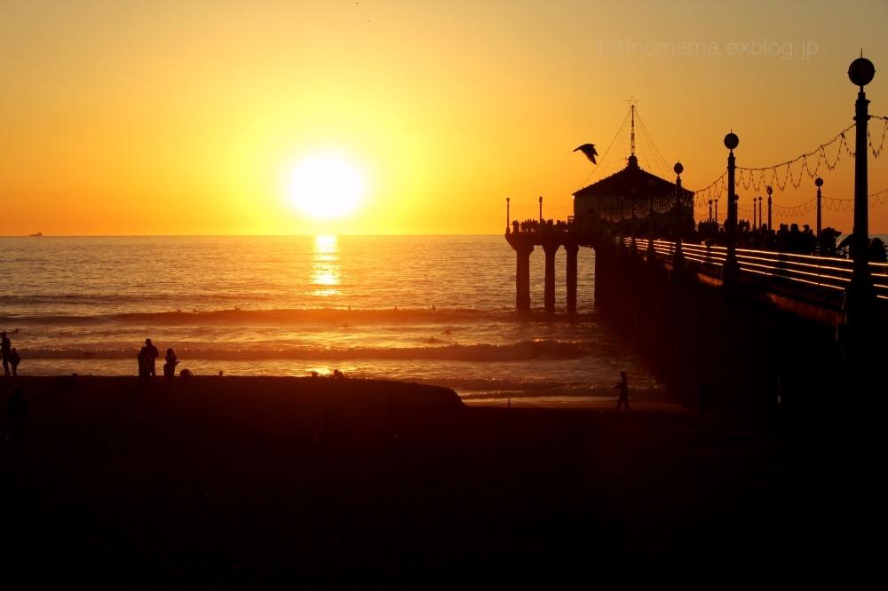 2016冬 カリフォルニアドライブ旅行⑦_e0360552_23192518.jpg