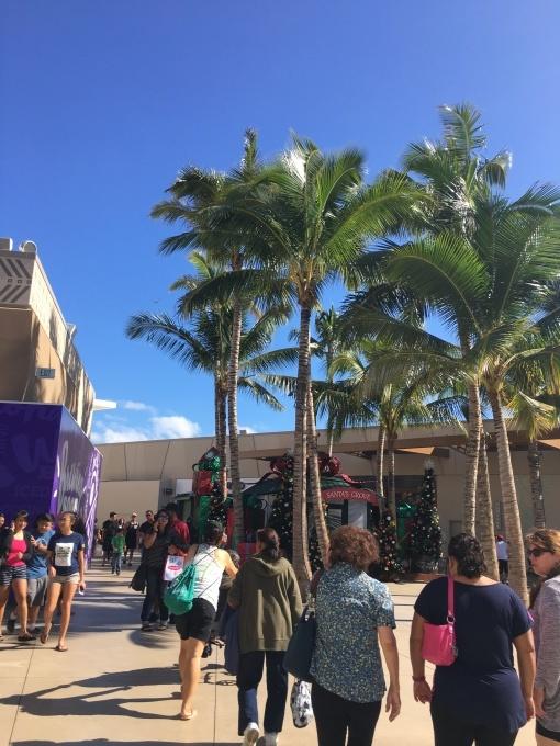2017正月ハワイ~カマカナアリィショッピングセンターのコアパンケーキ~_f0011498_15311671.jpg