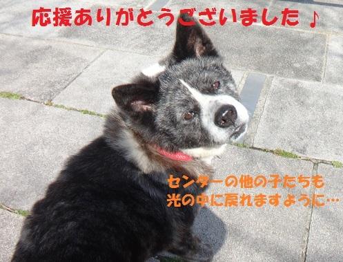 f0121712_09100618.jpg