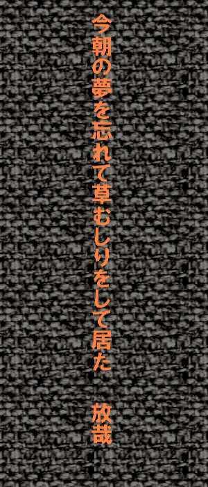 f0117041_06153466.jpg