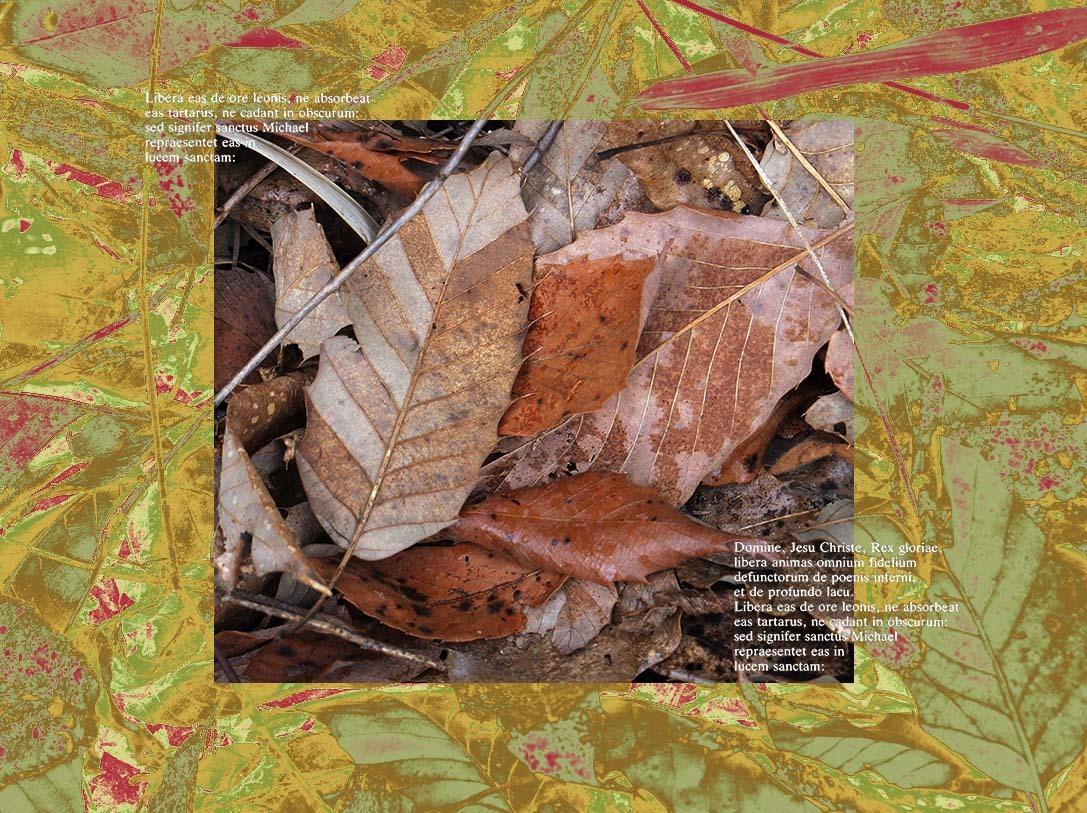 f0198771_23521948.jpg