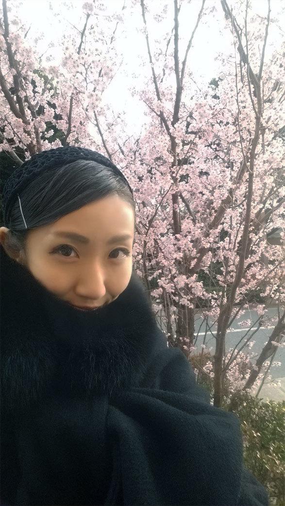 明日は本番☆桜も満開! 嬉しいホワイトデー!_d0224894_21011116.jpg