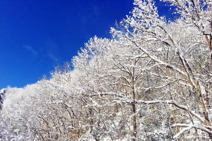 564 鳥取県 ~寝台特急サンライズ出雲の車窓から~_c0211532_14565176.jpg