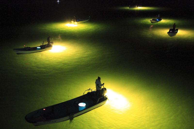しらすうなぎ漁は、宇宙みたい!_d0342449_09180992.jpg
