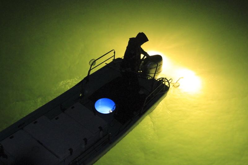 しらすうなぎ漁は、宇宙みたい!_d0342449_09182060.jpg