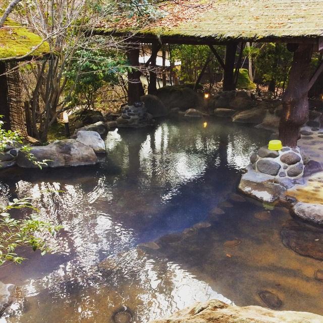 黒川温泉・和らく。_b0125443_1601878.jpg
