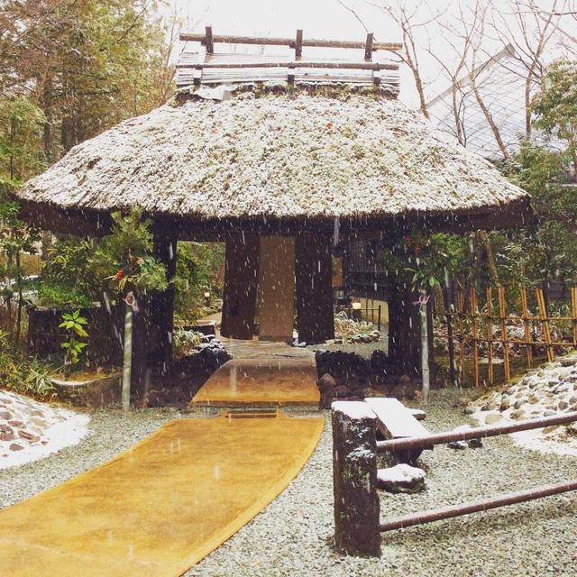 黒川温泉・和らく。_b0125443_1623811.jpg