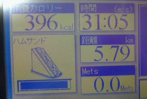 f0131183_00000175.jpg