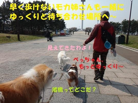 f0121712_15013797.jpg