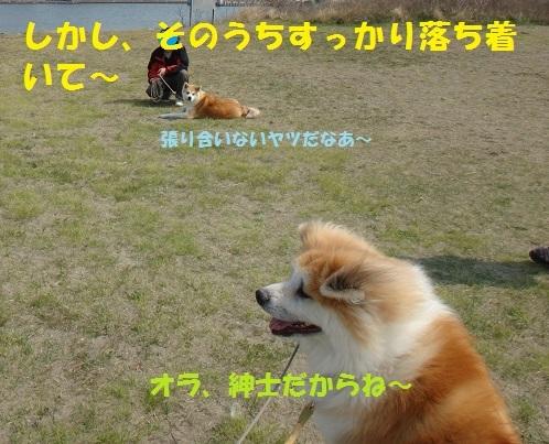 f0121712_15214871.jpg