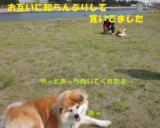 f0121712_15215236.jpg