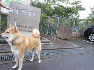 連休最終日_e0371017_11414550.jpg