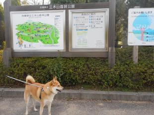 初めての公園へ_e0371017_11441099.jpg