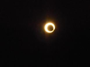 ランと日食_e0371017_11443842.jpg