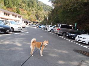 生野銀山へ_e0371017_11500503.jpg