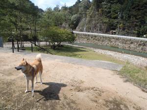 生野銀山へ_e0371017_11500527.jpg