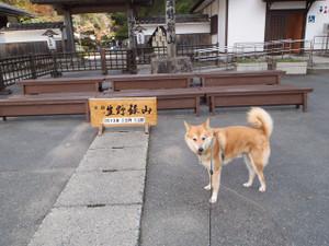 生野銀山へ_e0371017_11500682.jpg